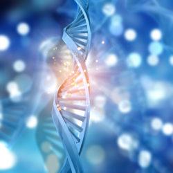 Gene Targeting & Polymerase Chain Reaction