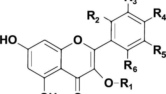 VSR's proprietary drug library FLAV-X is granted patent status by the Italian Patent and Trademark Office