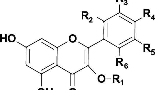 FLAV-X, la nostra piattaforma molecolare, ottiene lo status di brevetto dall'UIBM