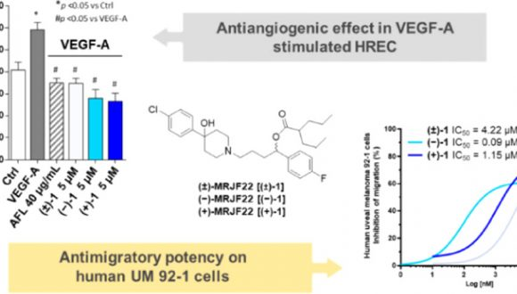 A new publication by the VSR's scientific team is reported in the Journal of Medicinal Chemistry. The research work presents interesting findings on a newly-developed drug candidate for patients with Uveal Melanoma.